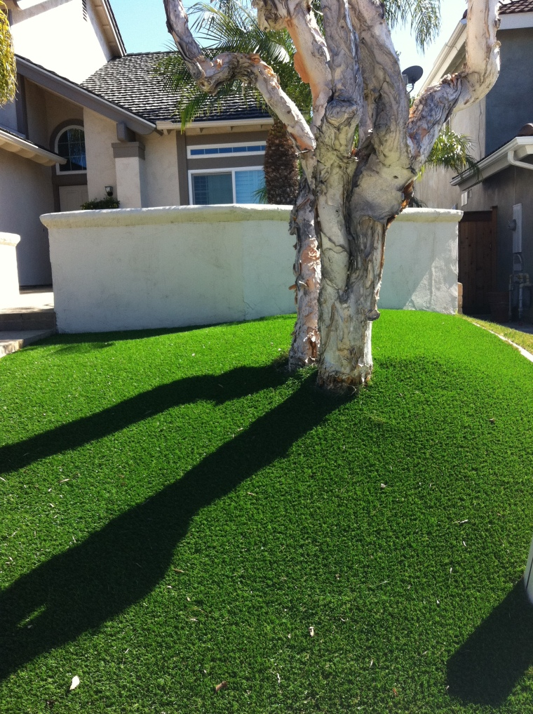 A neighbors astroturf af lawn.