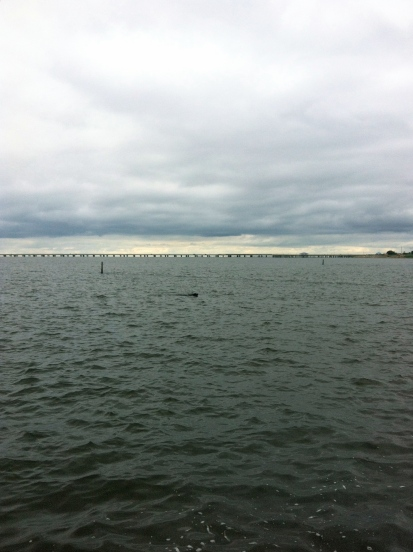 In Lake Ponchartrain